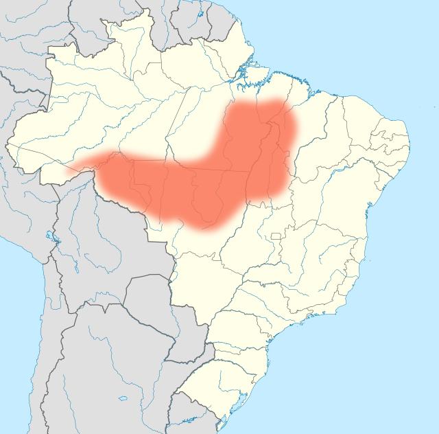 Fronteira_agricola_Amazonica_Brazil